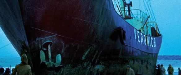 Hoe de wal het schip keerde